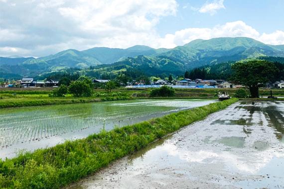 リルストーリア 指村農園
