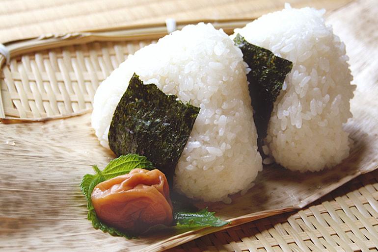 令和3年度米 山形県産 ミルキークイーン(特別栽培米) – 渡部ファーム