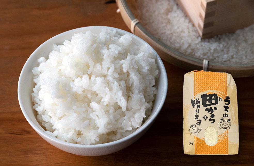 予約注文:令和3年度米 山形県産つや姫(特別栽培米)