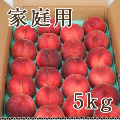 【家庭用】山形県産 桃 5kg