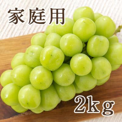 【家庭用】シャインマスカット 2kg