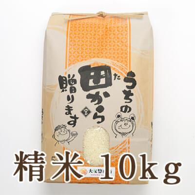 山形県 庄内産 ササニシキ 精米 10kg