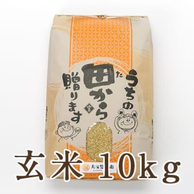 山形県 庄内産 ササニシキ 玄米 10kg