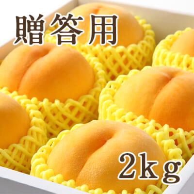 【贈答用】山形県産 黄桃 特秀品 2kg