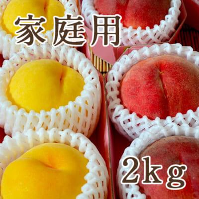 【家庭用】山形県産 桃 秀品 2kg
