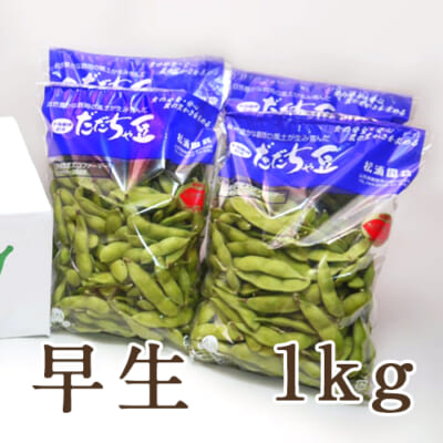 山形県産 枝豆 だだちゃ豆 早生 1kg