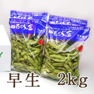 山形県産 枝豆 だだちゃ豆 早生 2kg