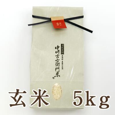 山形県産 自然栽培 亀の尾 玄米5kg