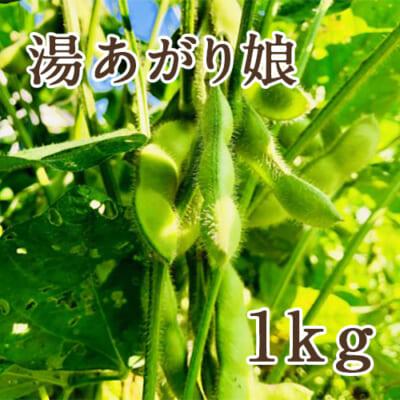 山形県産 枝豆 湯あがり娘 1kg