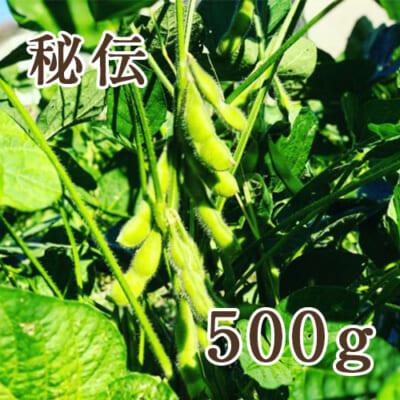 山形県産 枝豆 秘伝 500g