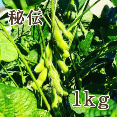 山形県産 枝豆 秘伝 1kg