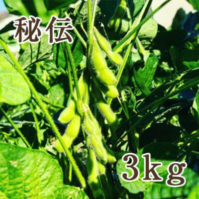 山形県産 枝豆 秘伝 3kg