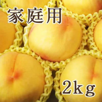 【家庭用】黄桃 2kg