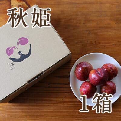 山形県産プラム 秋姫 1箱