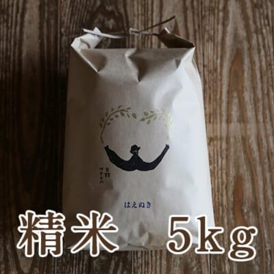 山形県産 はえぬき 精米5kg