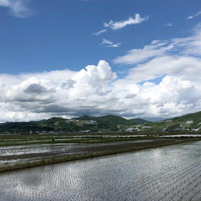 県下有数の米どころ置賜地方