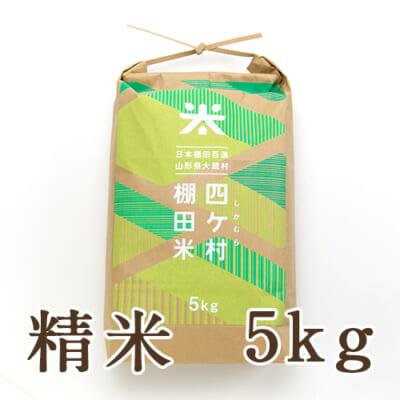 山形県産 はえぬき「四ヶ村棚田米」精米5kg