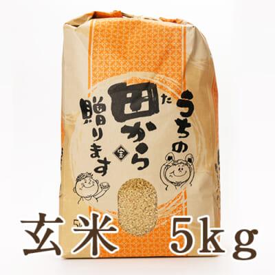 山形県産つや姫(特別栽培米)玄米5kg