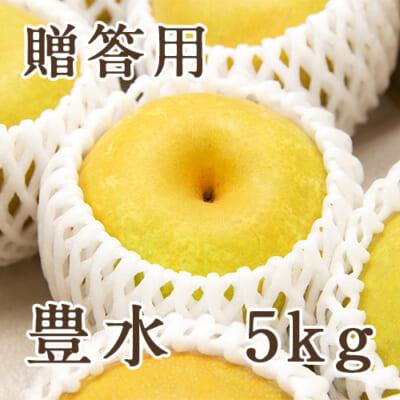 【贈答用】豊水 5kg
