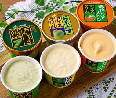 JA鶴岡のアイスクリームセット
