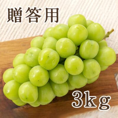 【贈答用】シャインマスカット 3kg