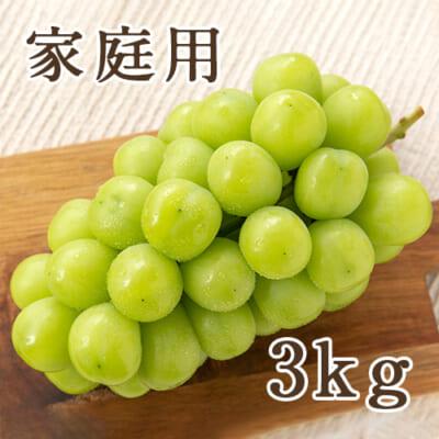 【家庭用】シャインマスカット 3kg